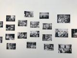 Galeria (41/70)