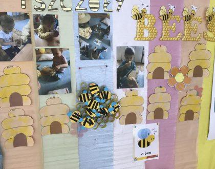 Pszczoły i ich domy