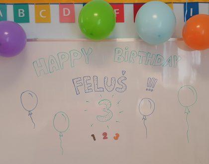 Urodziny Felka