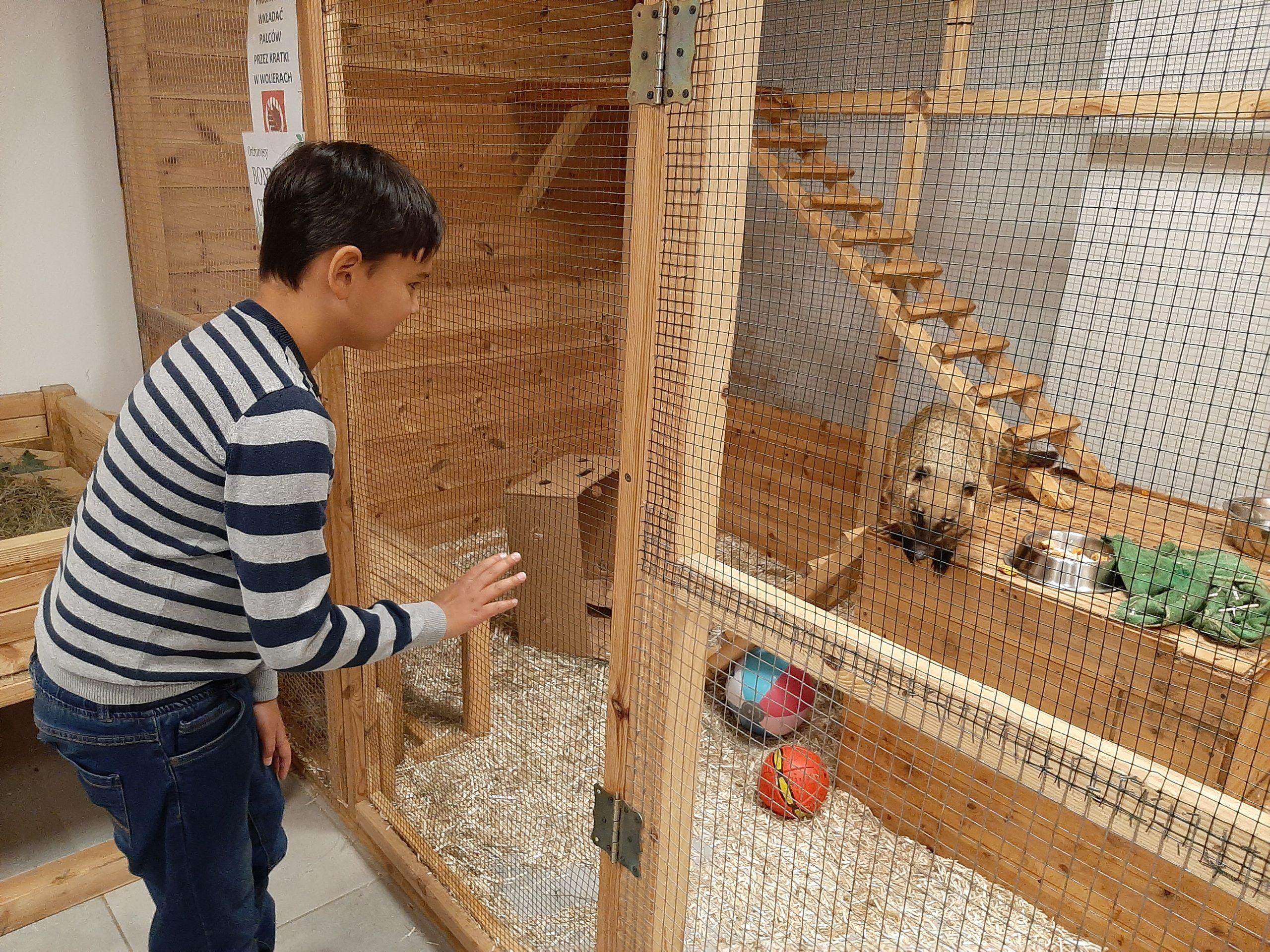 Wizyta w Mini Zoo grupy WAG (Wild Animal Group)